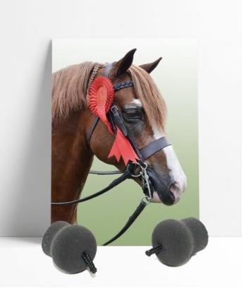Perform Equine Heritage Pony