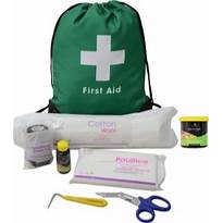 Lincoln Travel First Aid